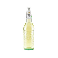 Galvanina ginger ale bio – 355 ml x 12 pc